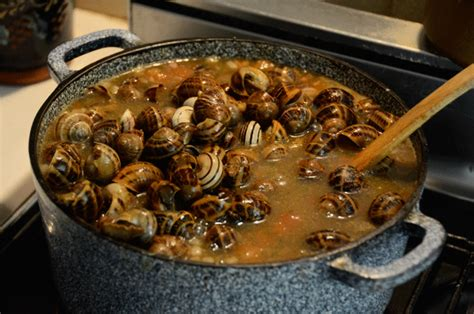 comment cuisiner les escargots escargots quot petits gris en suççarello quot à la provençale la