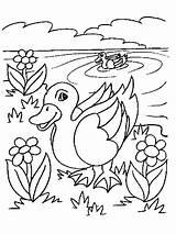 Pond Coloring Pages Preschool Getdrawings sketch template