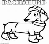 Coloring Pages Dachshund Daschund Funny Sheet sketch template