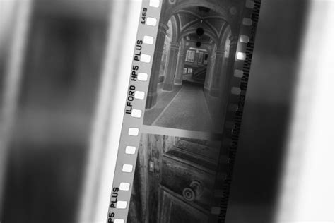 chambre noir photographie le développement d 39 un noir et blanc le négatif