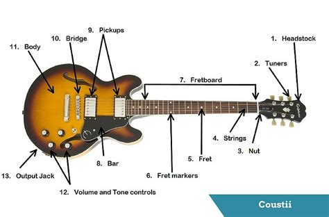 guitars anatomy parts   electric guitar coustii