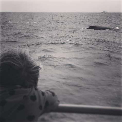 Summer Boating Safety Breastfeedbabywearclothdiaper