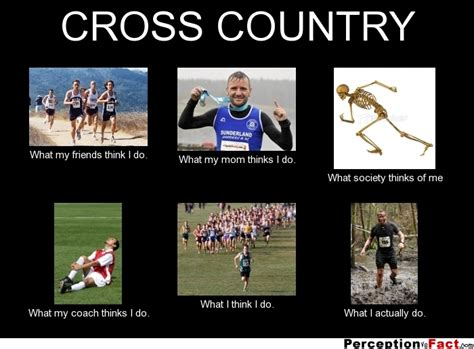 Cross Country Memes - cross country what people think i do what i really do perception vs fact