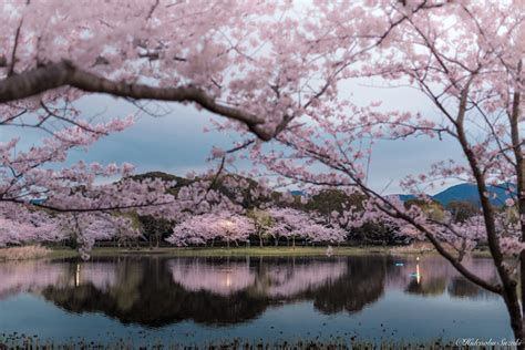 gorgeous landscapes reveal  idyllic tranquility  japan