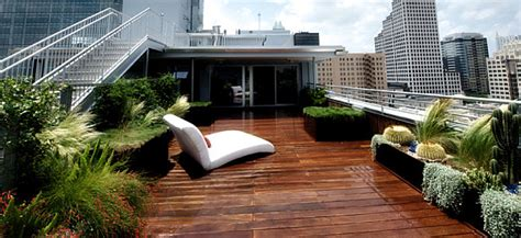modern roof garden new gardening ideas for spring