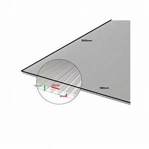 Plaque Polycarbonate 4mm Brico Depot : plaque polycarbonate alv olaire ~ Dailycaller-alerts.com Idées de Décoration