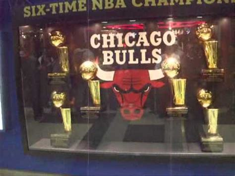 chicago bulls trophies youtube