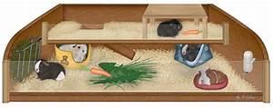 Meerschweinchen Gehege Ikea : fischbeker heideschnuten ~ Orissabook.com Haus und Dekorationen
