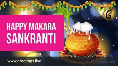 Sankranti Greetings Sankranthi Wishes Festival Animated Happy