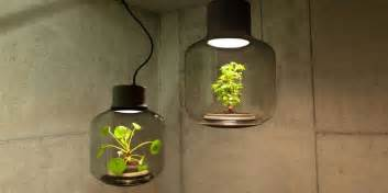 grow l for windowless rooms grow plants without sunlight