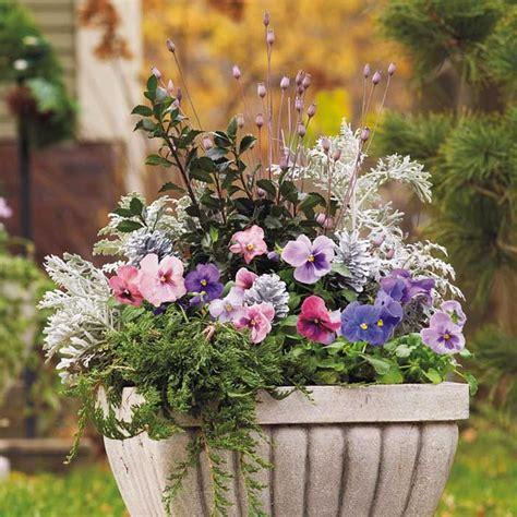 ideas  winter container gardening