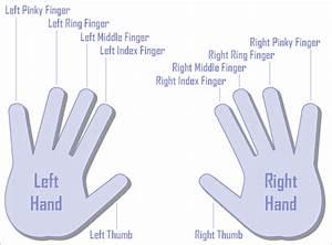 Trigger Finger Diagram