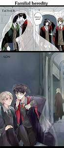 Invisibility cl... Drarry Fanfiction
