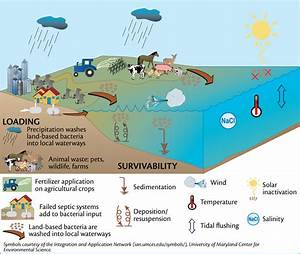 Science Of Stormwater