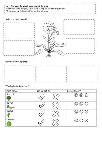 year 1 plants and growing unit science by keiramccosh teaching resources