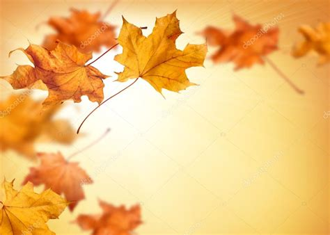 Falling Leaves Live Fall Backgrounds by High Resolution Fall Backgrounds Fall Background With