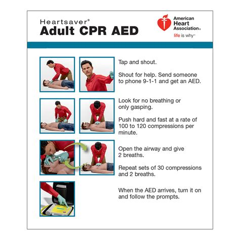 AHA Adult CPR AED Wallet Card - 100 Pack WorldPoint®