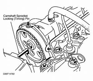 1990 Peugeot 405 Serpentine Belt Routing And Timing Belt Diagrams