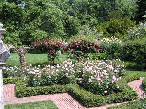 Formal Rose Garden  Landscaping & Gardening Pinterest