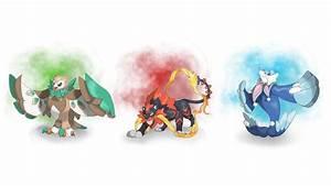 Pokemon Shiny Shinx Evolutions Images | Pokemon Images