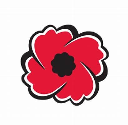 Poppy Remembrance Clipart Legion Sunday Royal Canadian