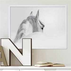 Pferdekopf Schwarz Weiß : design poster mit bilderrahmen weiss 39 pferd 39 30x40 cm schwarz weiss motiv pferdekopf zeichnung ~ Watch28wear.com Haus und Dekorationen