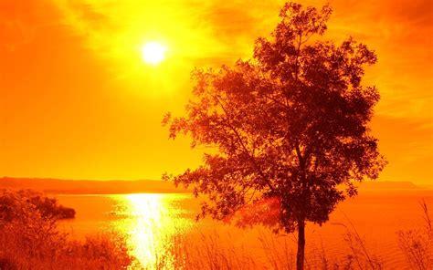 nature orange sunset picture nr