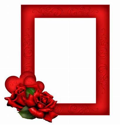 Frame Transparent Roses Frames Rose Cadres Flower