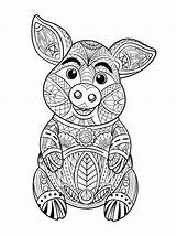 Pig Coloring Vector Cute Adult Premium Adults Pages Illustration Freepik Colouring Boar Wild Animal Cartoon Drawn Hand Pattern Disney Da sketch template