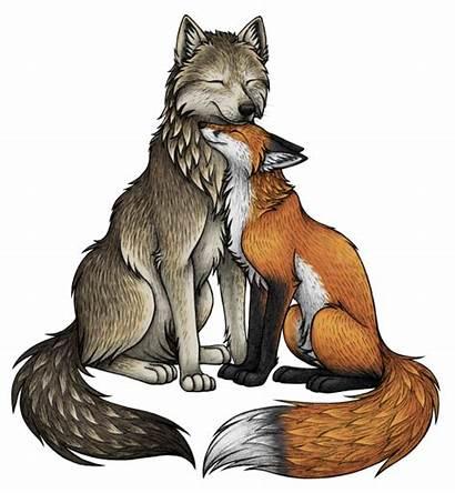Wolf Fox Illustration Drawings Raposa Wolves Drawing