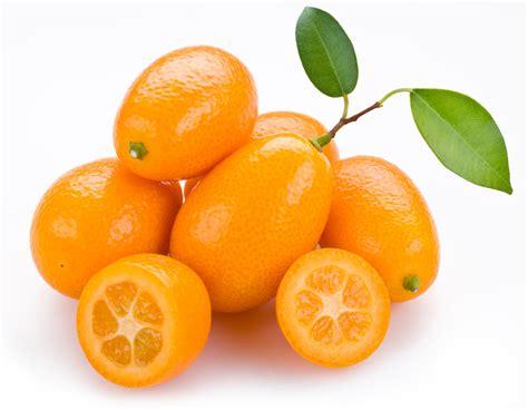 Kumquat Images Kumquat Produce Made Simple