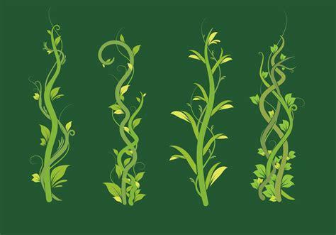 liana green leaf vector pack   vectors clipart graphics