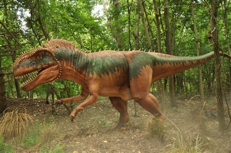 Megalosaurus - Facts and Pictures
