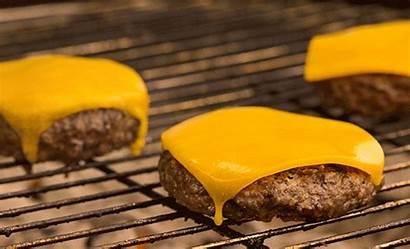 Cheese Burger Melting Cheeseburger Bbq Gifs Animated