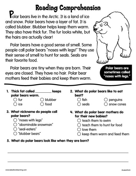 reading comprehension polar bears worksheet