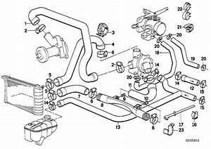 Bmw 325i Water Hose  Engine  Cooling  Hoses