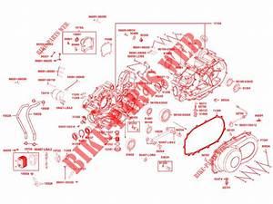 Kymco Engine Diagram