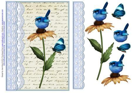 vintage script  birds  cages  papers