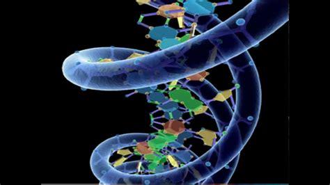 AP Biology Macromolecules Rap - YouTube