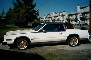 Dion211 1981 Cadillac Eldorado Specs  Photos  Modification