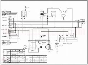 Loncin 110cc Wiring Diagram  2  With Images