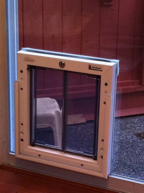 dog door sliding glass door patio door dog door doggie