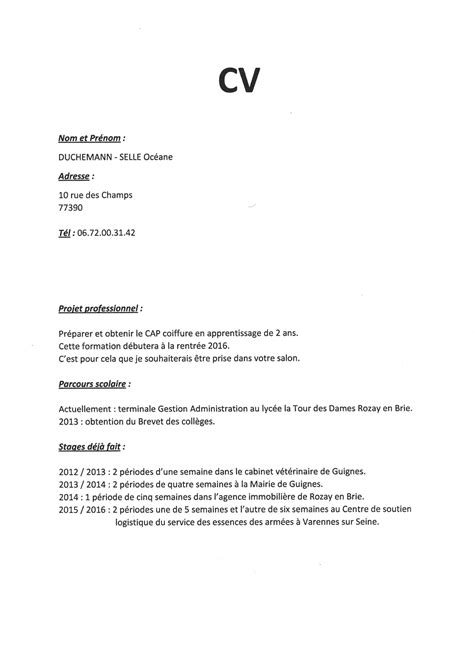 lettre motivation apprentissage cuisine cv pour apprentissage cap coiffure starengineering in