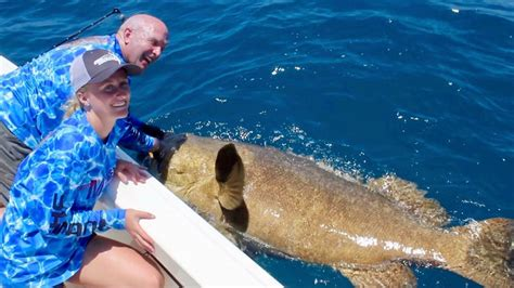 grouper record goliath gulp teen catch catches florida pound breaking release westernbass twin