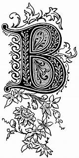 Lettering Letter Fancy Alphabet Pages Letters Zentangle Styles Coloring Calligraphy Illuminated Typography Hand Doodle Ornate Fonts Numbers Monogram Patterns Template sketch template