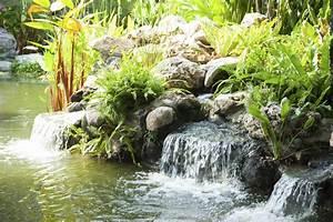 deco bassin exterieur criteres de choix ooreka With decoration bassin de jardin