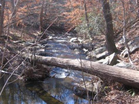pine log creek trail hiking
