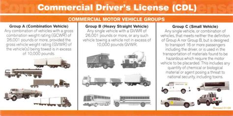 D. Commercial Driver's License Class