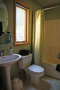 Typical 5x8 bathroom becomes fun for boys fine homebuilding for Bathroom porm
