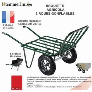 Brouette 2 Roues Brico Depot : brouette fourrag re agricola twin 2 roues gonfl es ~ Dailycaller-alerts.com Idées de Décoration